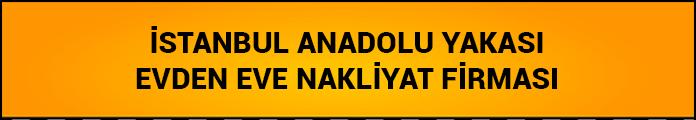 istanbul anadolu yakası evden eve nakliyat firması