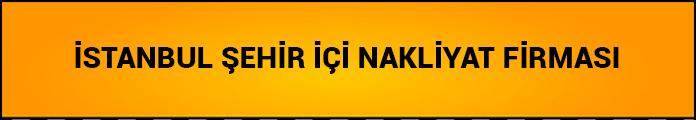 istanbul şehir içi nakliyat firması